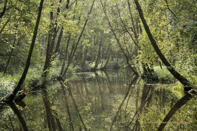 Natuurmonumenten en spiegeltje, spiegeltje ……….