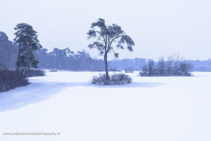 Wat de Nederlandse winterprikkels waard zijn
