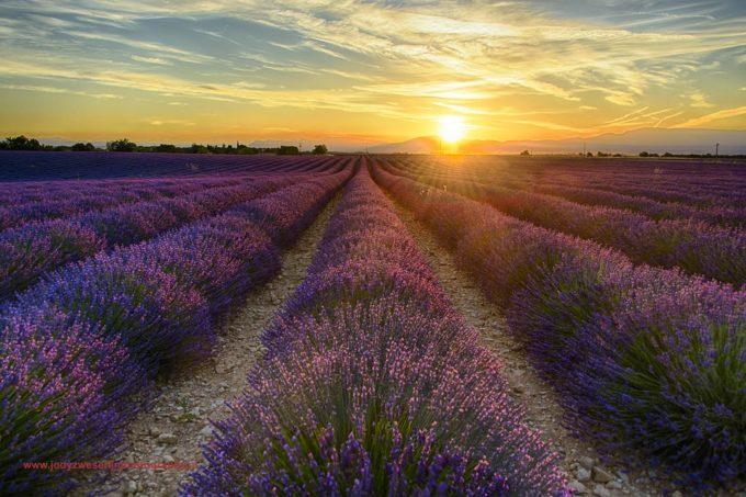 Provence: Licht, sfeer, landschappen en geveltjes